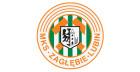 Logo Zagłębie