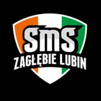 SMS Zagłębie Lubin zaprasza na zajęcia piłki ręcznej